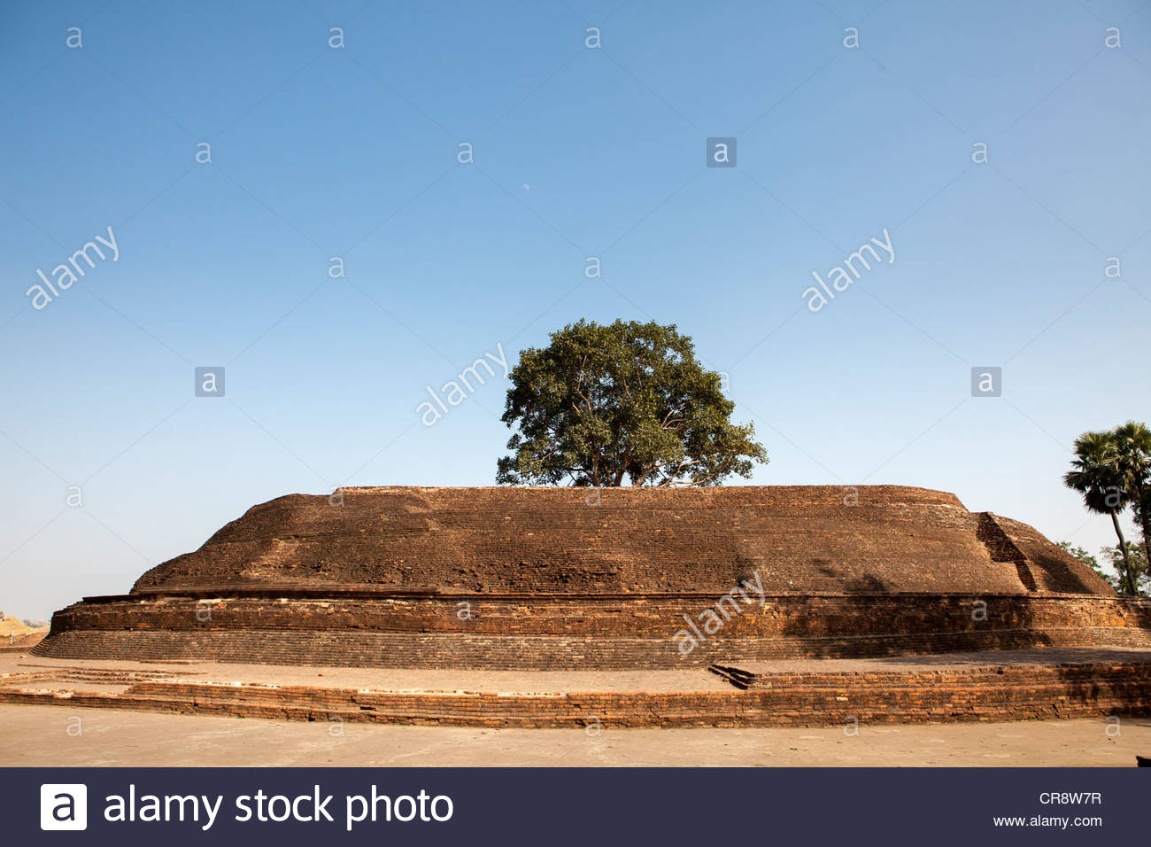 Sujata Stupa Bodhgaya, Stupa of Sujata Garh, Bodh Gaya, Bihar, India Stock Photo, Royalty ...