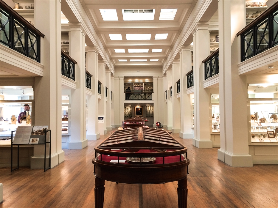 Surgeons' Hall Museums Edinburgh, Surgeons' Hall Museums | VisitScotland