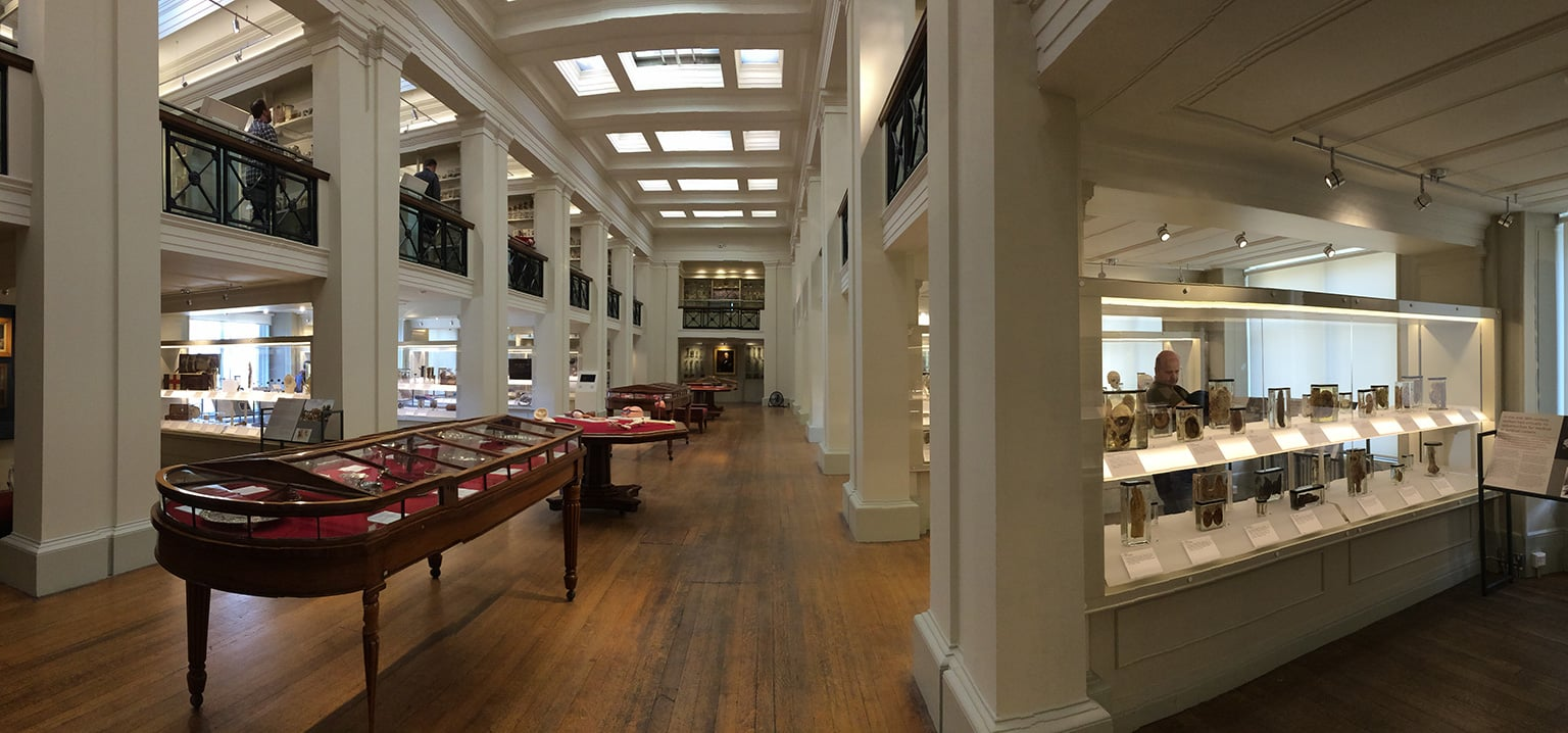 Surgeons' Hall Museums Edinburgh, Surgeons' Hall Museums - Art Fund