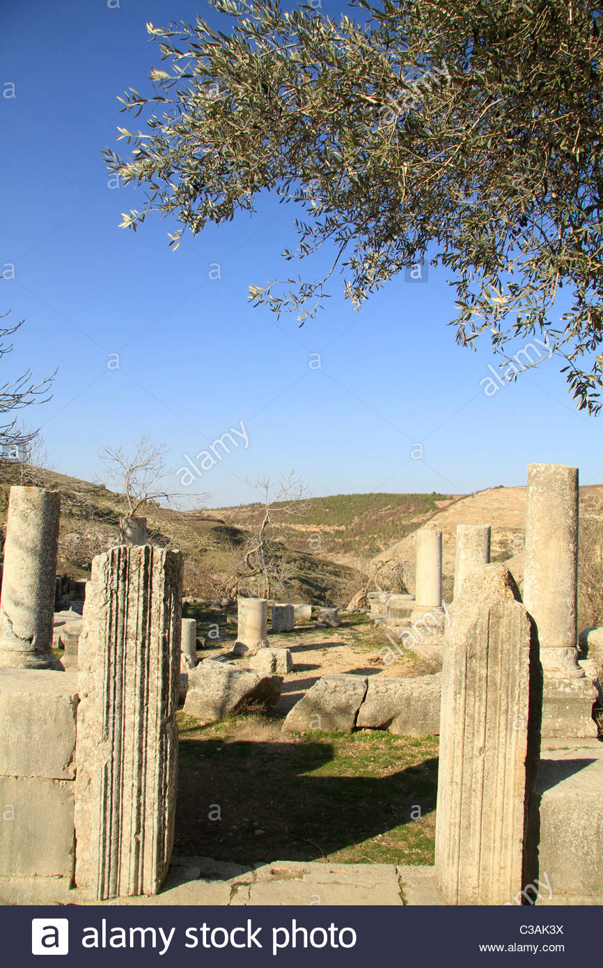 Bar'am National Park Upper Galilee and the Golan, Israel, Upper Galilee, the ancient Synagogue of Gush Halav Stock ...