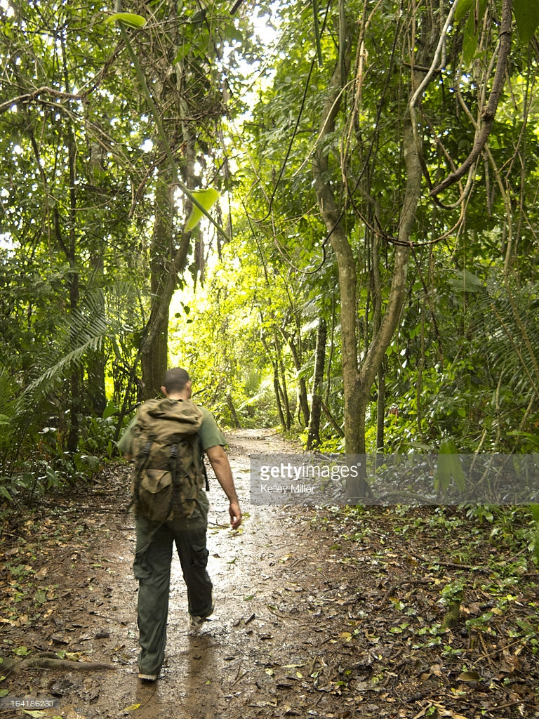 Tapir Mountain Nature Reserve Cayo District, A Guide Walks Along The Trail To Actun Tunichil Maknul Stock Photo ...