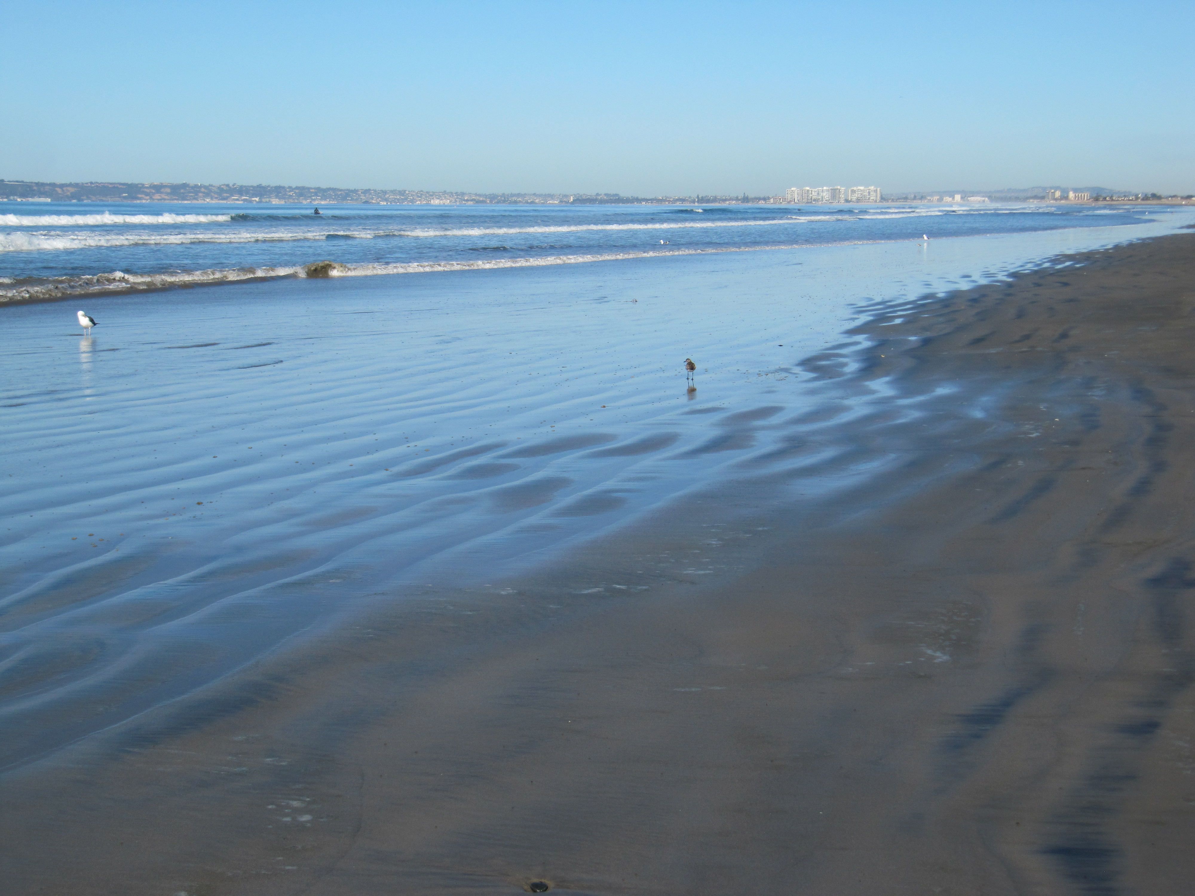 The Baked Bear San Diego, Silver Strand State Beach California « Beach Treasures and ...