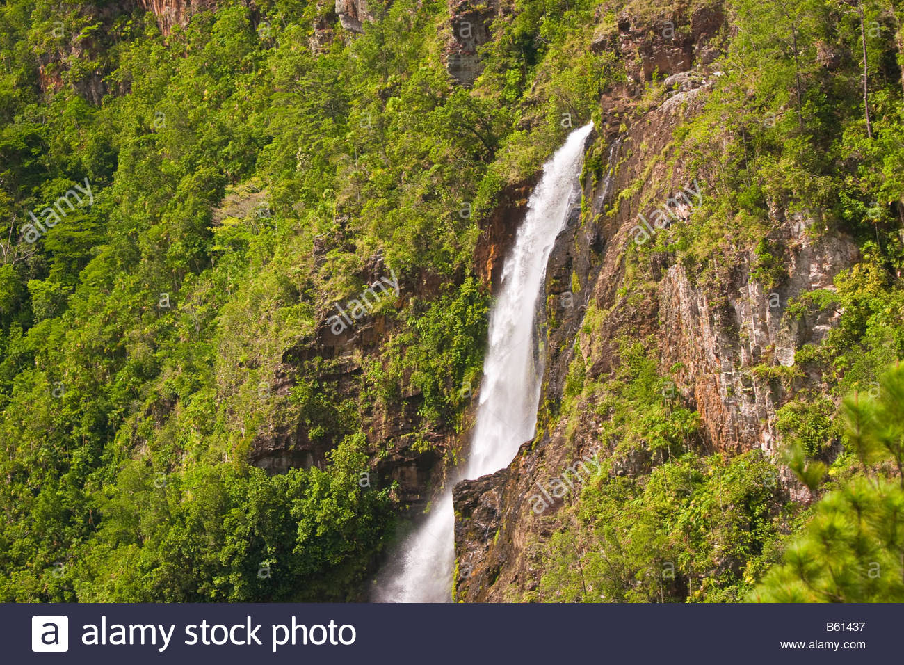 Thousand Foot Falls Mountain Pine Ridge Area, CAYO DISTRICT BELIZE Thousand Foot Falls in the lush Mountain Pine ...