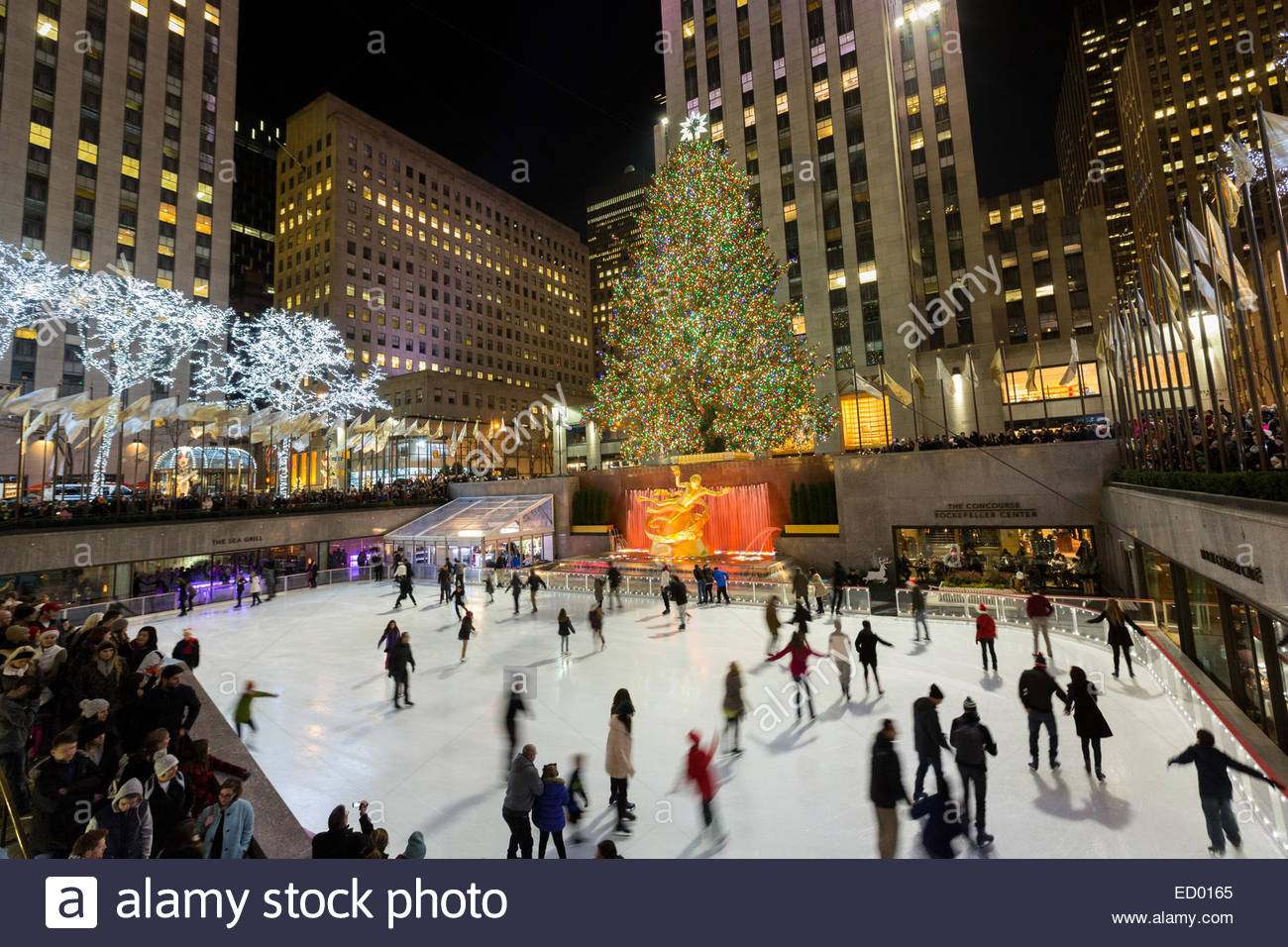 Tibet House New York City, Ice skating during the Christmas holiday lights at the Rink at ...