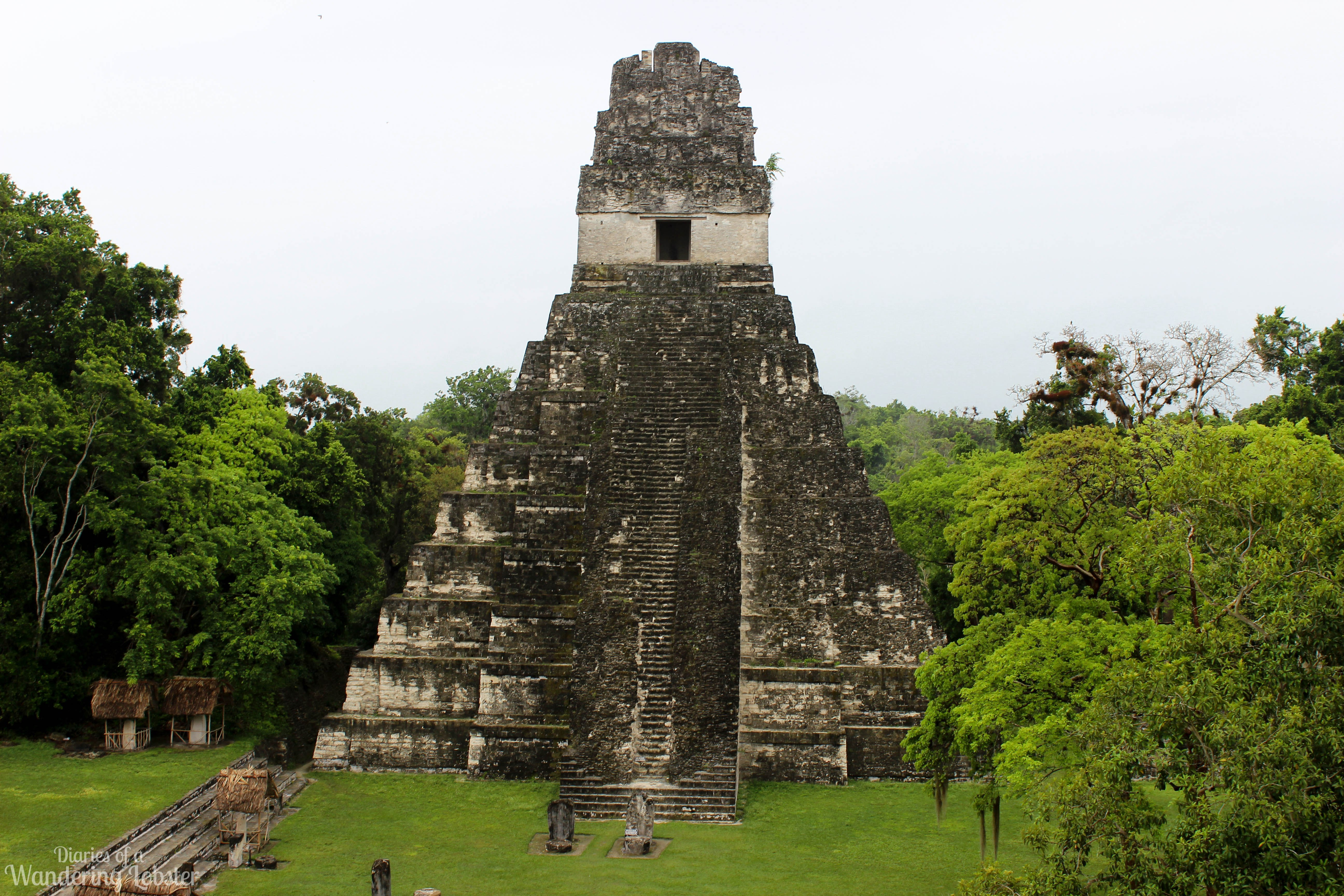 Tikal Tikal, A Quick Guide to Tikal National Park - Diaries of a Wandering Lobster