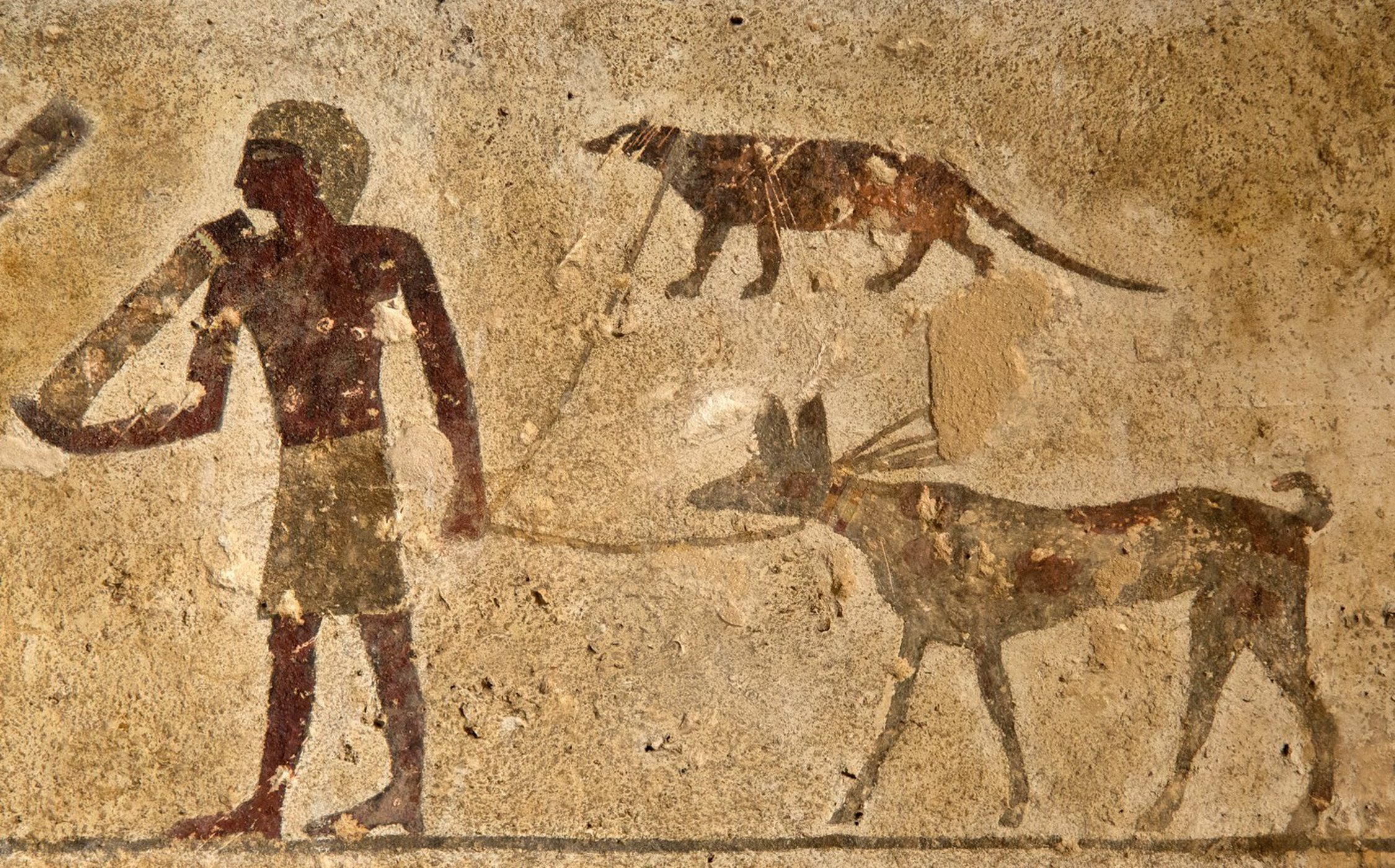 Tomb of Baqet (No 15) Beni Hasan, The Latest Discoveries in Egyptology (May-July 2017) – Nile Scribes