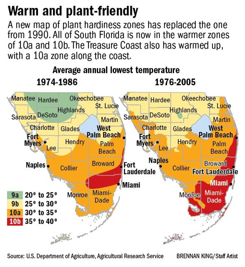 Town of Palm Beach Municipal Beach Palm Beach and the Treasure Coast, New USDA map puts Palm Beach County in warmer zone for plants