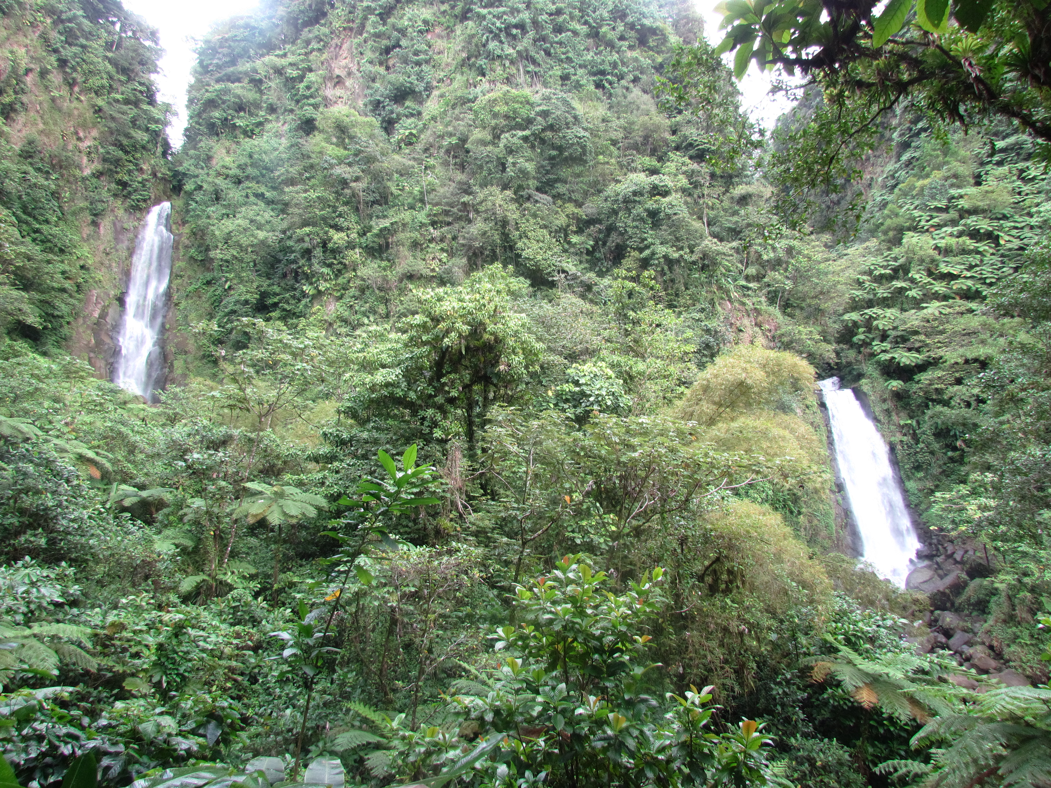 Trafalgar Falls Trafalgar Falls, Trafalgar Falls and Botanical Gardens   Dominica 2012