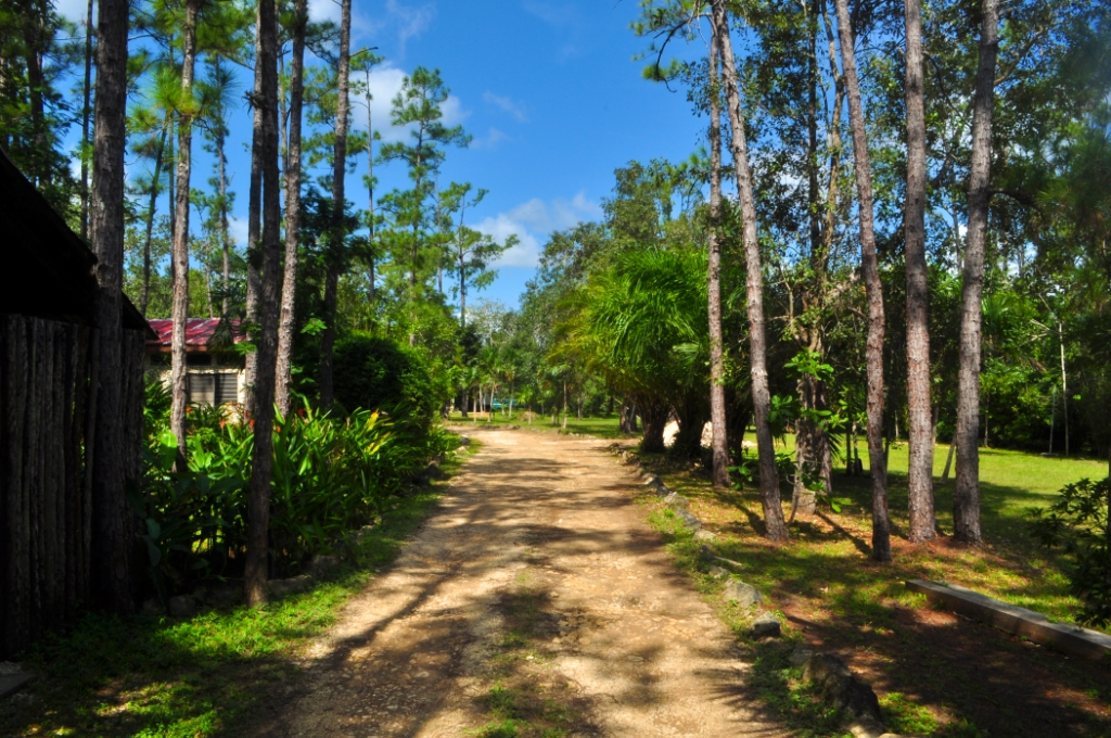 Tropical Education Center and Belize Zoo Jungle Lodge Belize City, The Belize Zoo Lodge - The Belize Zoo
