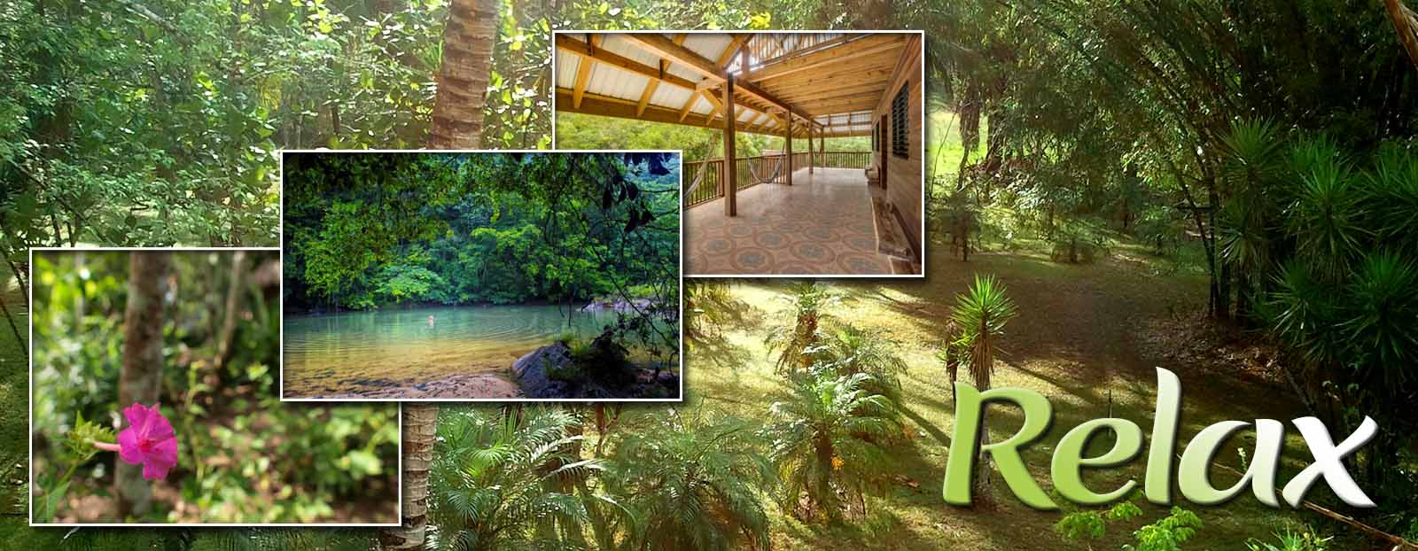 Tropical Wings The Cayo District, Martz Farm Treehouses & Cabanas