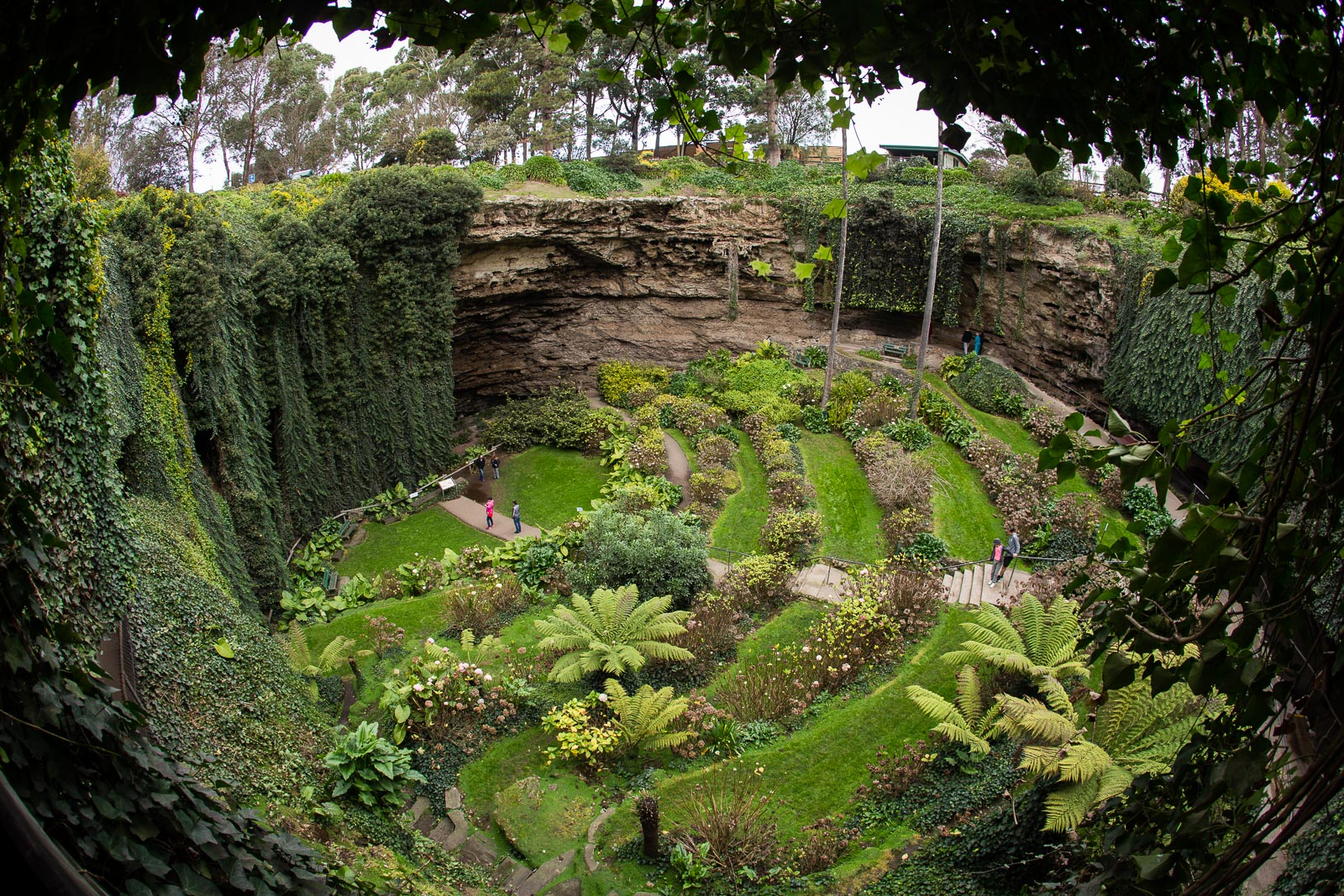 Umpherston Sinkhole Mount Gambier, South Australia | AusTravelPhotography