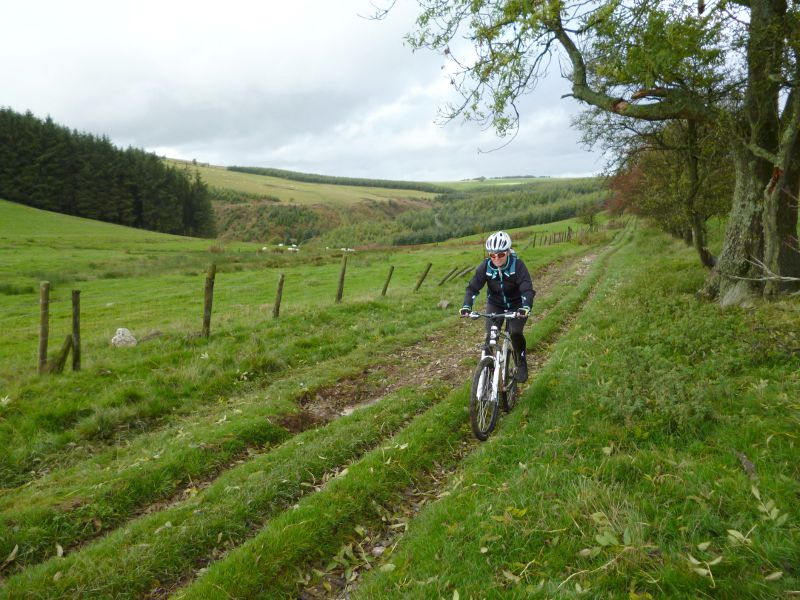 Vale of Ceiriog North Wales, Ceiriog Valley & the Vale of Llangollen - MTB Route Guide