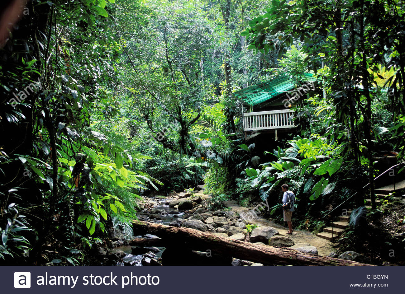 Valombreuse Floral Park Basse-Terre Island, France, Guadeloupe (French West Indies), Basse Terre, Valombreuse ...