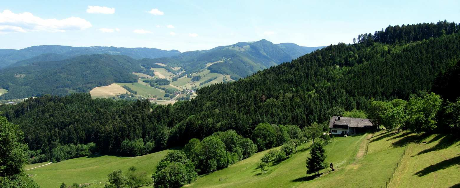 Weil der Stadt The Black Forest, Top 10 Most Beautiful Hikes in the Black Forest | Komoot