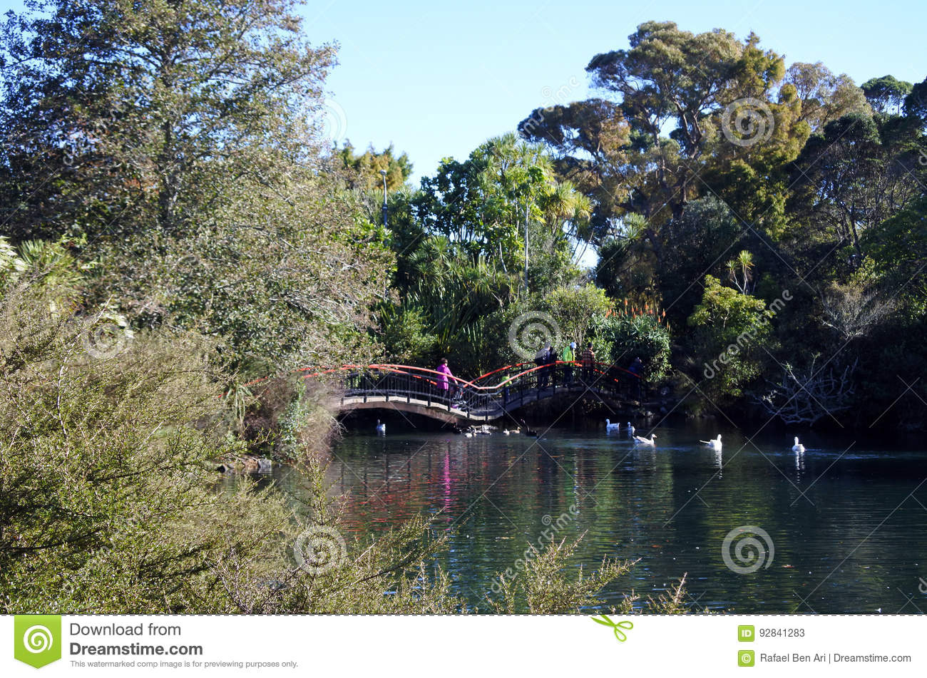 Western Springs Auckland, Western Springs Park In Auckland New Zealand Stock Photo - Image ...