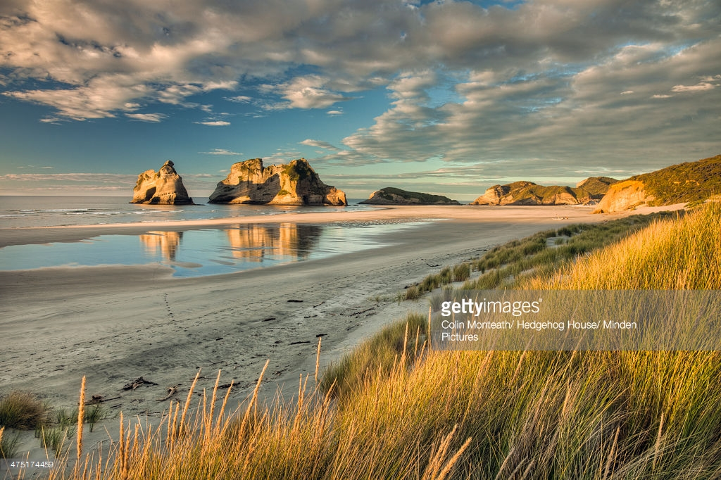 Wharariki Beach Collingwood & Around, Evening Light On Sand Dunes Archway Islands In The Distance ...