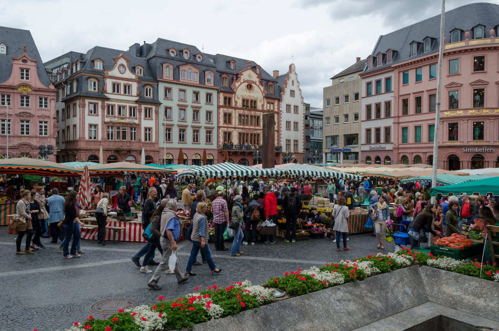 Wochenmarkt The Pfalz and Rhine Terrace, Cologne, Dresden and/or Heidelberg?? - Rick Steves Travel Forum