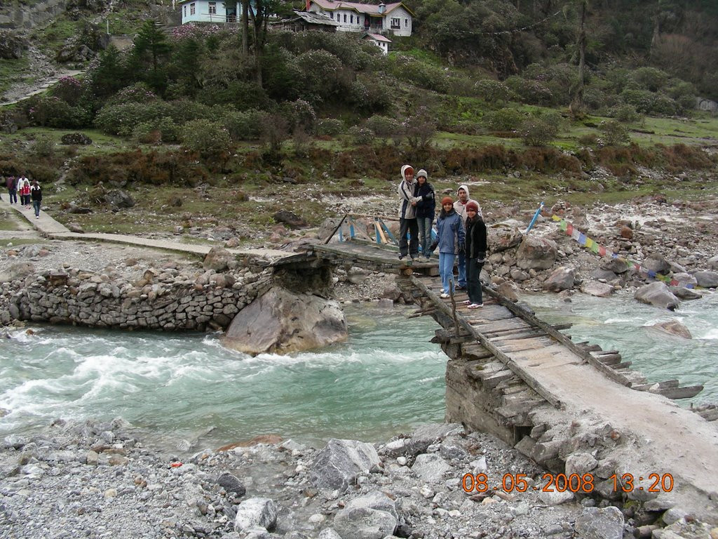 Yumthang Hot Springs Yumthang Valley, Mighty Rendezvous Sikkim Package - TripFactory