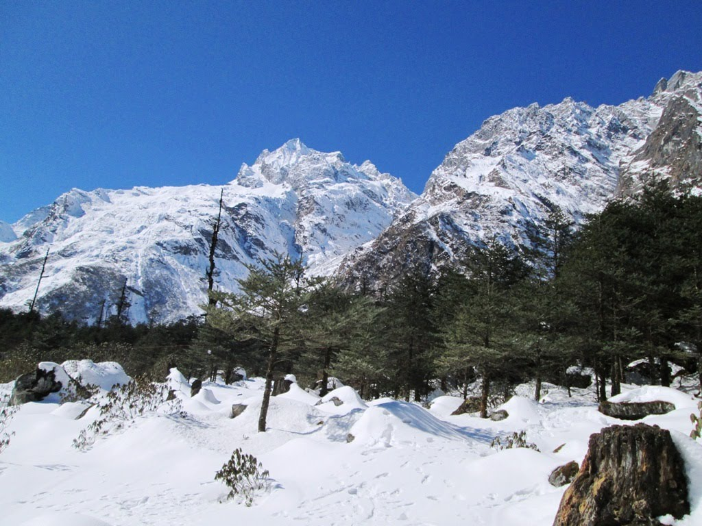 Zero Point Yumthang Valley, MIND BLOWING BEAUTY OF YUMTHANG VALLEY, ZERO POINT- SIKKIM,GANGTOK ...