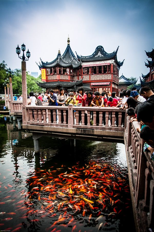 Zhìhuà Temple Běijīng, 32 best Shanghai images on Pinterest | Shanghai, The bund and Beijing