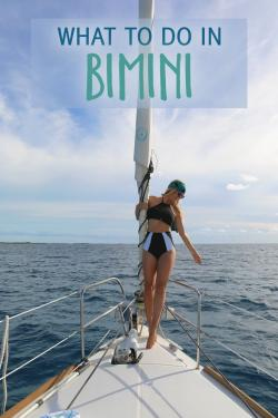 Bimini Biological Field Station Sharklab Andros, Bimini, and the Berry Islands | 145 best Things to do in Bimini images on Pinterest | Vacation ...