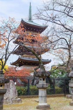 Asuka-yama Oji Paper Museum Tokyo | Five Storied Pagoda Of Kaneiji Temple At Ueno Park In Tokyo Stock ...