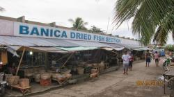 Bait Market Roxas   The Solitary Dolphin: A Visit to Roxas City, the Country's Seafood ...