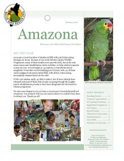 Belize Bird Rescue The Cayo District | First newsletter of 2015 | Belize Bird Rescue
