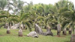 Big Wild Goose Pagoda The Silk Road   Xishuangbanna Tropical Flowers and Plant Garden - China Maps [Map ...