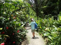 Bonaire Botanical Garden North End   Things we did today...: Instead Of Irma - Part I Diamond Botanical ...
