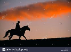 Borgholms Slott Borgholm | Mountain horse riding on Icelandic horse in the Vindelfjallen ...