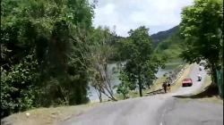 Bosque Estatal de Guilarte Adjuntas & Around | Bosque Guilarte Adjuntas - YouTube