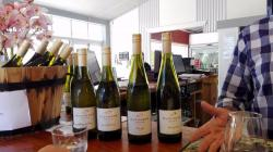 Bushmere Estate Gisborne | Bushmere Estate (Gisborne, New Zealand): Top Tips Before You Go ...