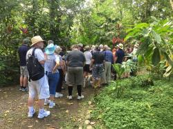 Cacao Trails Southern Caribbean | Unique Business Opportunity -Tours Operator In Southern Caribbean ...
