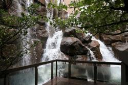 Cal Anderson Park Seattle | Seattle Secrets: Waterfall Garden Park — Rain or Shine Guides