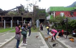 Cat Village Houtong | Formosa Guide: Houtong (Cat Village) Travel Guide