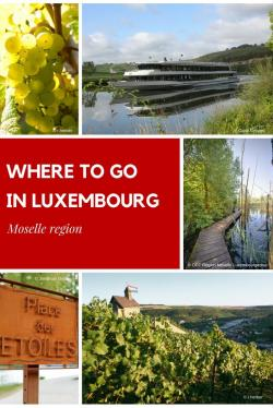 Caves St-Martin The Moselle Valley | 63 best Moselle Region images on Pinterest | Luxembourg, En place ...