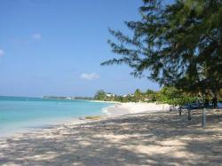 Cemetery Beach George Town & Seven Mile Beach | Grand Cayman snorkeling guide, Cayman Islands