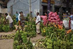 Dambulla Produce Market Dambulla | Dambulla … the city and the market | Stepping Out of Babylon