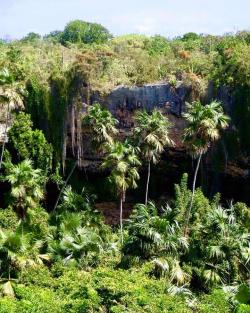 Darby Sink Cave Barbuda | The 'DARBY SINK CAVE' is one of many natural treasures in Barbuda ...