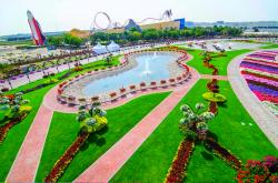 Dubai Miracle Garden Dubai | Dubai Miracle Garden All Set To