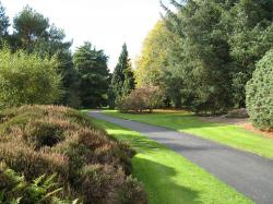 Dundee Botanic Garden Fife and Angus | Parks and Playgrounds In Dundee | Day Out With The Kids