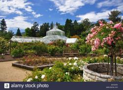 Dunedin Botanic Garden Dunedin | Winter Garden Glasshouse from Rose Gardens, Dunedin Botanical ...