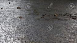 Heavy Sands Black River   Heavy Rain Storm And Abundant In The Bed Of A River With Stones ...
