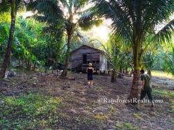 Hummingbird Highway The Cayo District | Belize Land Hummingbird Highway with Caves Branch Riverfront for Sale