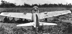 Japanese Zero Fighter Peleliu | 30 Dazzling Images of Wrecks and Crashes of Japanese Fighters A6M ...