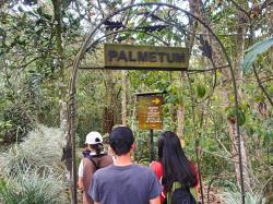 Jardín Botánico del Quindío (Butterfly Farm) Southwest Colombia | Coffee, Yipao And Nature: Things To Do In Calarca, Quindio ...