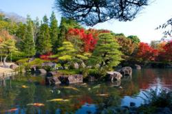Kōkō-en Japan | The Best Koko-en Garden Tours, Trips & Tickets - Japan | Viator