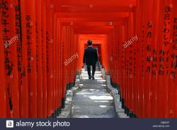 Kabukichō Tokyo | Red Torii gates and steps to the entrance to the Hie-Jinja Shinto ...