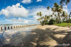 Manzanilla Beach East Coast | Eastern Shore: Trinidad's dramatic east coast - Caribbean Beat ...